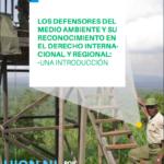 Los defensores del medio ambiente y su reconocimiento en el derecho internacional y regional. Una introducción.