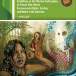Patterns of criminalization and limitations on the effective participation of women who defend environmental rights, territoy and nature in the Americas.