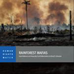Rainforest Mafias. How Violence and Impunity Fuel Deforestation in Brazil's Amazon