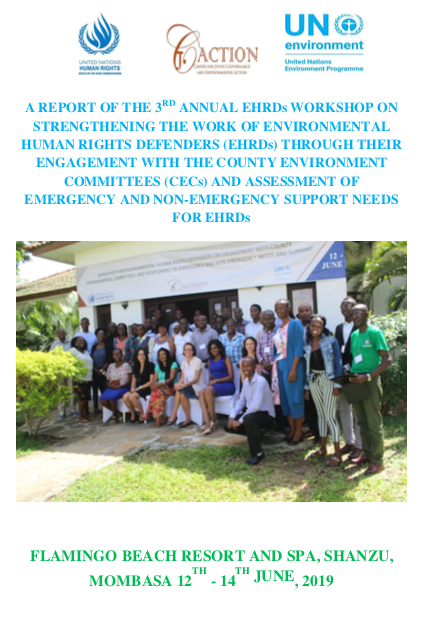 Strengthening the work of EHRDs through their engagement with the Country Environment Committees