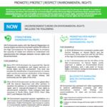 The Environmental Rights Initiative Factsheet