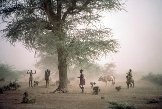 Lead Pollution in Kenya