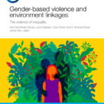 Gender-based Violence and Environment Linkages – The violence of inequality
