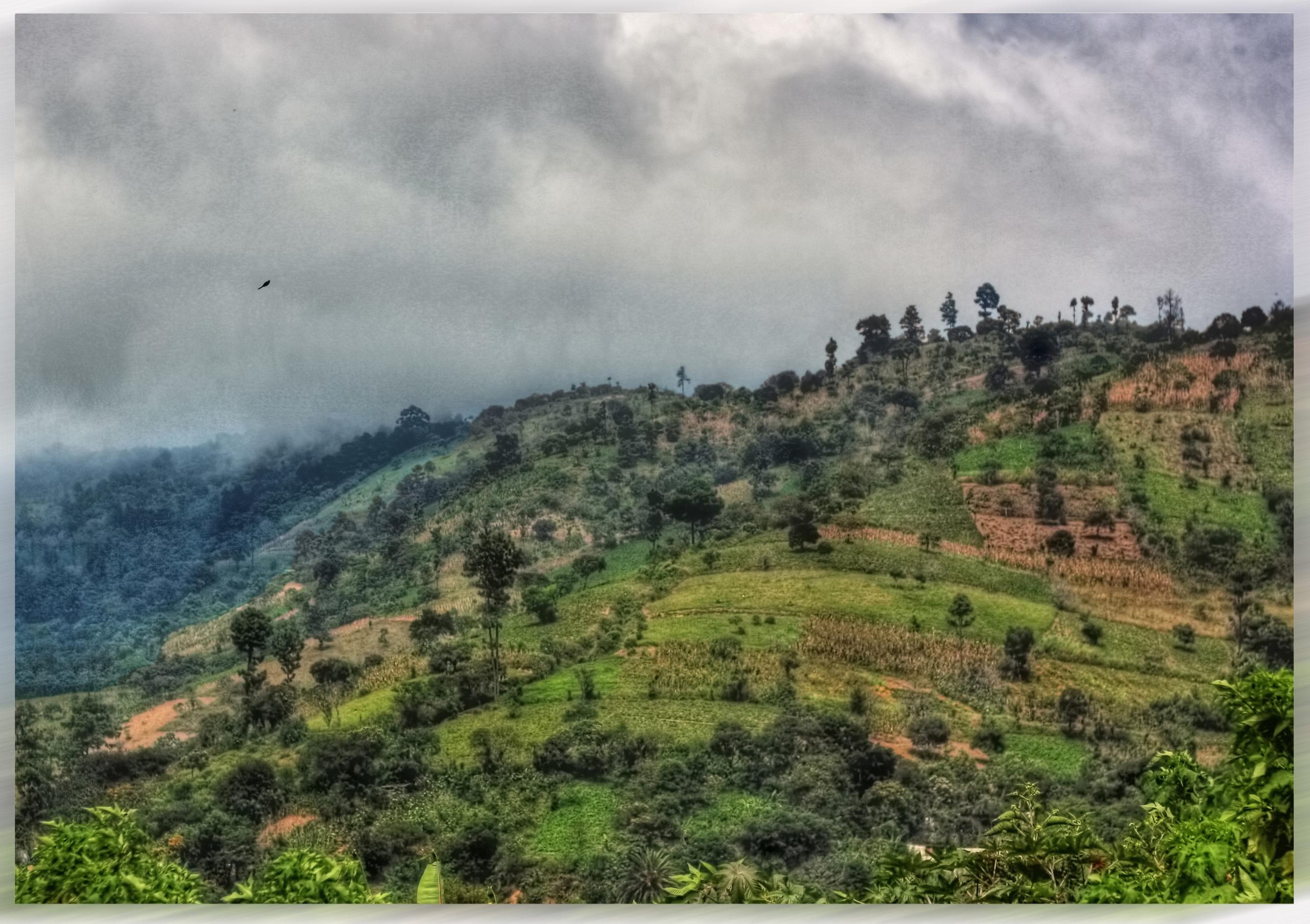 Lenca Indigenous Movement of La Paz Honduras – MILPAH