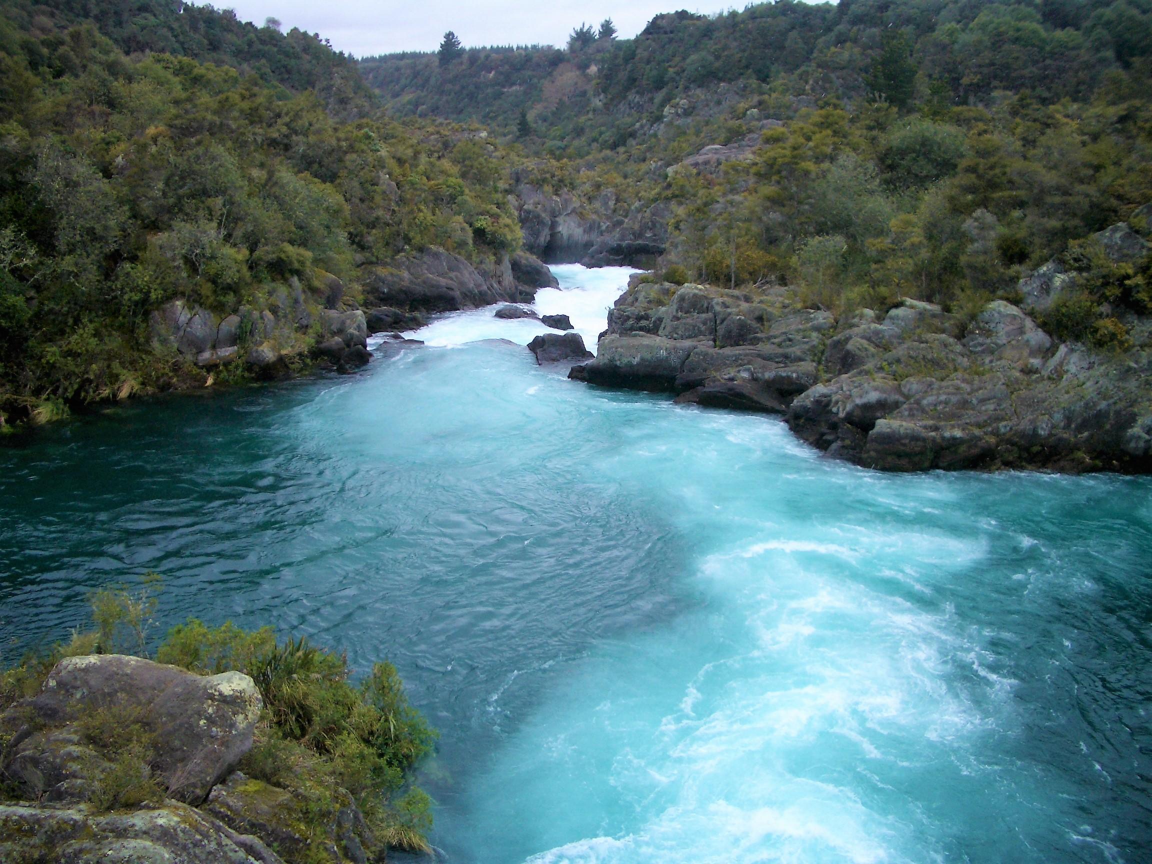 The Maori Tribe
