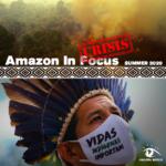 Amazon in Crisis