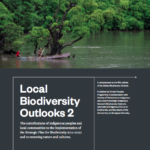 Local Biodiversity Outlooks 2: The contributions of indigenous peoples and local communities to the implementation of the Strategic Plan for Biodiversity 2011–2020 and to renewing nature and cultures.