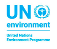 Researchathon for the 2021 Global Report on Environmental Rule of Law