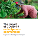The impact of COVID-19 on indigenous communities: Insights from the Indigenous Navigator
