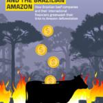 Beef, Banks and the Brazilian Amazon