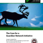 The Case for a Guardian Network Initiative