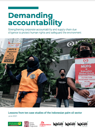 Demanding Accountability: Strengthening corporate accountability and supply chain due diligence to protect human rights and safeguard the environment