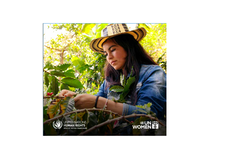 REALIZING WOMEN'S RIGHTS TO LAND AND OTHER PRODUCTIVE RESOURCES. Second Edition